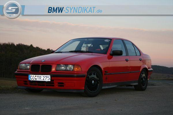 E36 316i Hellrot [Verkauft:-(] - 3er BMW - E36 - IMG_4155.JPG