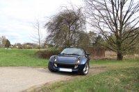 Smart Roadster - Fremdfabrikate - IMG_2146.JPG