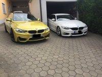 BMW F36 GC low is life ;) - 4er BMW - F32 / F33 / F36 / F82 - IMG_4936.JPG