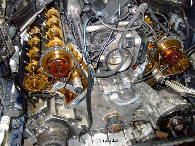 Anleitung M62b44 Steuerkette Schienen Tauschen Motoren Umbau