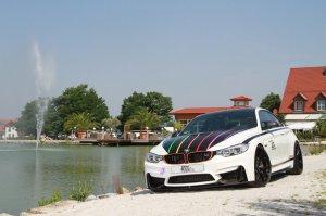 BMW-News-Blog: BMW M4 DTM Champion Edition: Tuning f�r die Wittma - BMW-Syndikat