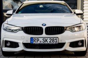 BMW-News-Blog: BMW Diesel Sound - die Lösung - BMW-Syndikat
